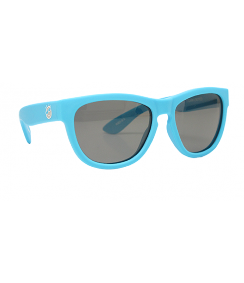 Polarized Mini-Shades